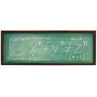 Pierre De Fermat İçin Google'dan Özel Logo