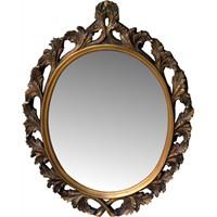 Aynalara Sinek Konmasını Nasıl Önleyebiliriz?