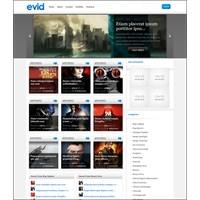 25 Mükemmel Wordpress Video Teması