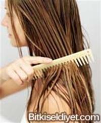 Saç Dökülmesi Ve Kepek İçin Bitkisel Tedavi