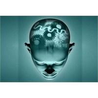 Dijital Medya, Ergen Beyni Ve Bilişsel Nörobilim