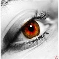 Tanıdık Bir Şey Var Gözlerinde
