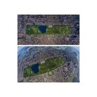 Central Park'a Bir De Buradan Bakın