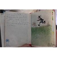 İlkokul Günlüğüm Vol 4