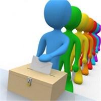 Örgütlülük, Sosyal Medya Ve Temsili Demokrasi