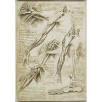 Da Vinci'nin Yapılacaklar Listesi