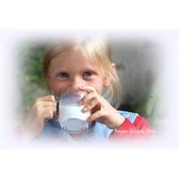 Süt İçmenin En Önemli 21 Nedeni