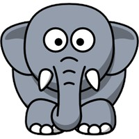 Fil Avlama Yöntemleri