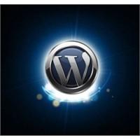 Videolarla Wordpress Dersleri