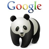 Google Panda Algoritmasına Uygun Siteler Oluşturma