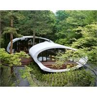 Doğa İçinde Rüya Gibi Evler