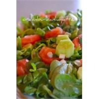 Semizotu Salatası- Tam Mevsimi