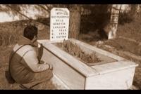 Yedi Satırlık Bir Şiirdir Ölümün