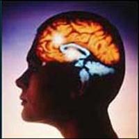 Epilepsi-sara İçin Bitkisel Çözümler