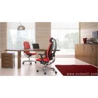 Ofis Dekorasyonu 2011 Trendleri