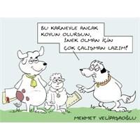 Karne Günü Karikatürleri