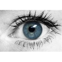 Gözümüz Kaç Megapiksel ?