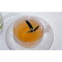 H3n2 Virüsüne Karşı Zeytin Yaprağı Çayı