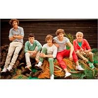 One Direction Kimdir ?