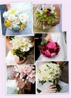 Gelin Çiçeği Örnekleri
