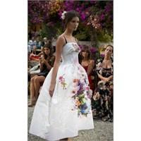 D&g Ve Haute Couture