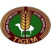 Tigem 2013 Yılı Sertifikalı Tohumluk Fiyatları