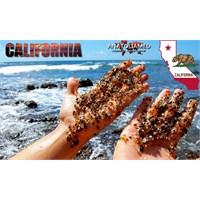 Camdan Plaj – Kaliforniya