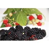 Güzelliğinize Güzellik Katacak Sebze Ve Meyveler
