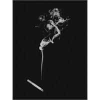 Sigaranın İçinde Bulunan Zararlı Maddeler