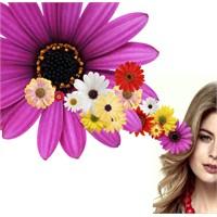 8 Mart Dünya Kadınlar Günü Anısına