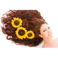 Saç Dökülmesi Ve Saç Dökülmesini Önlemenin Yolları