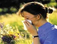 Bahar Alerjisine İyi Gelen Bitkiler Nelerdir??