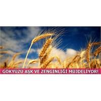 2 Ağustos'ta Gökyüzü Aşk Ve Zenginliği Müjdeliyor!