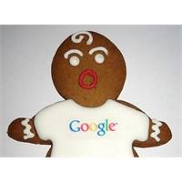 Google Kullanıcılarının Çoğunluğu Erkek