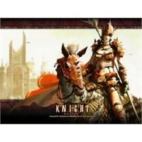 Oyun İnceleme: Knight Online