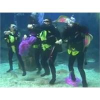 Su Altında Gangnam Style