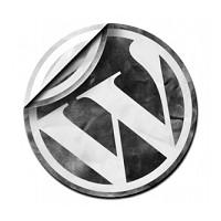 Sade Ve Kullanışlı Wordpress Temaları