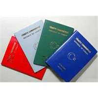 E-pasaportun Bilinmeyenleri