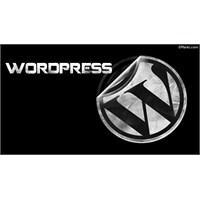 Wp Toplam Kategori, Yazı, Yorum Sayısını Gösterme