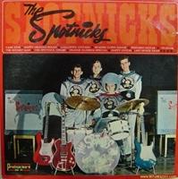 The Spotnicks -johnny Guitar