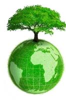 Ekonomide Yeşil Çağ