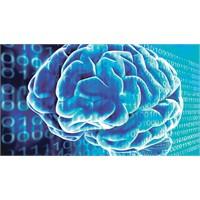 İbm İnsan Beynini Kopyalama Yolunda