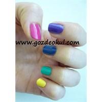 Yaz Renkleri