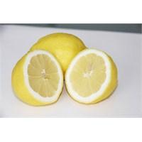 Güzel Kokulu Limonun Faydaları