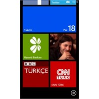 Windows Phone 8 Reboot Problemi
