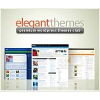 Ücretli Wordpress Temaları