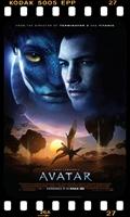 Avatar: Yuvan, Kendini Ait Hissettiğin Yerdir
