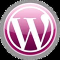 10 Dakikada Wordpress İle Tanışın!