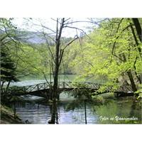 Abant, Gölcük Gölü ve Yedi Göller...
