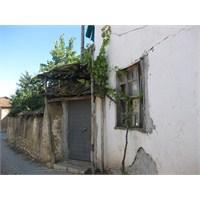 Köy Ziyaretimizden Fotoğraflar